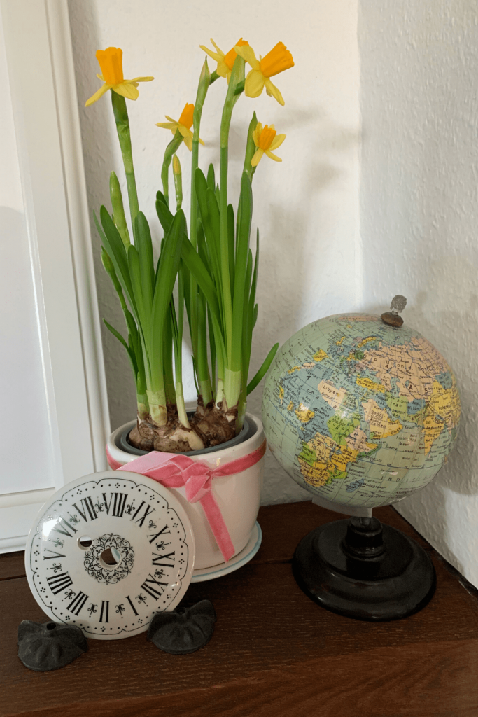 Scandi-inspired Easter decor: simple pot of daffodils to decorate our house for Easter and herald in Spring