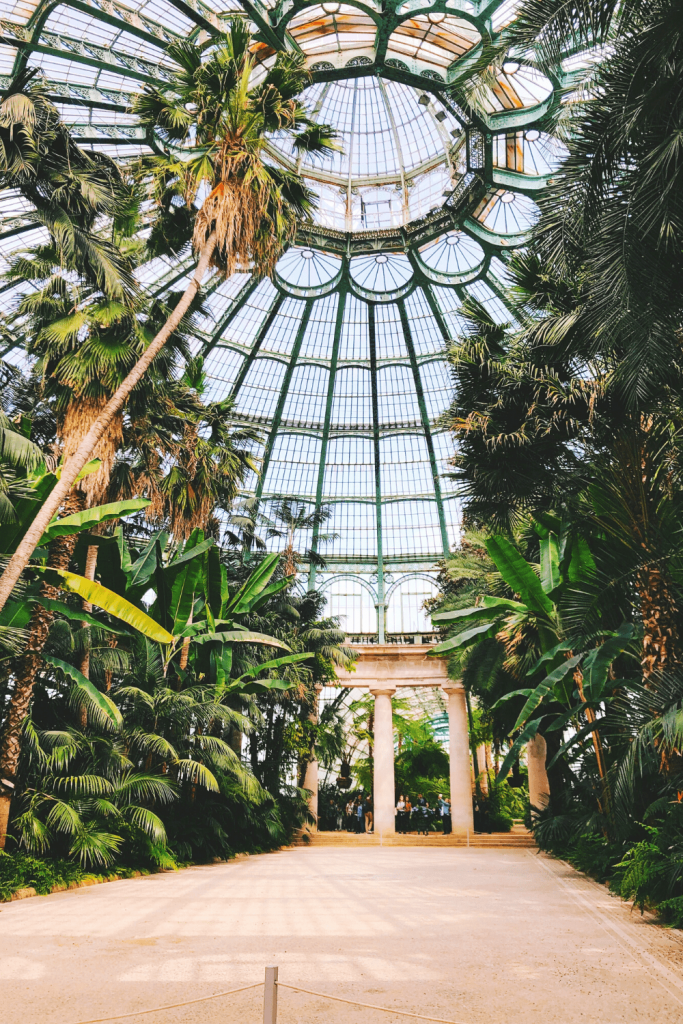 What to see and do in Brussels: if your timing is right, visit the royal greenhouses at Laeken; image by Alex Vasey on unsplash.