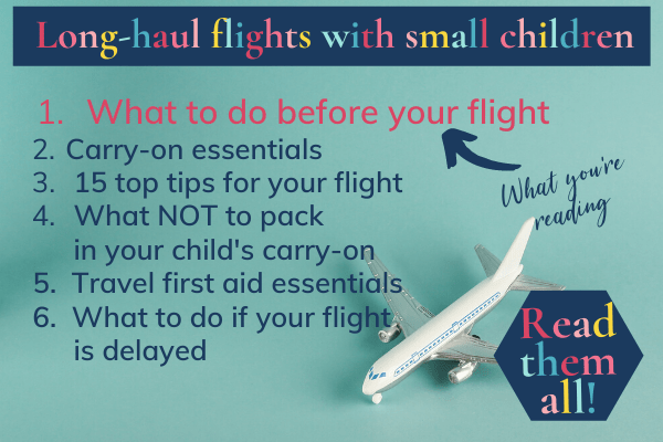 Long-haul flights with toddlers: the posts