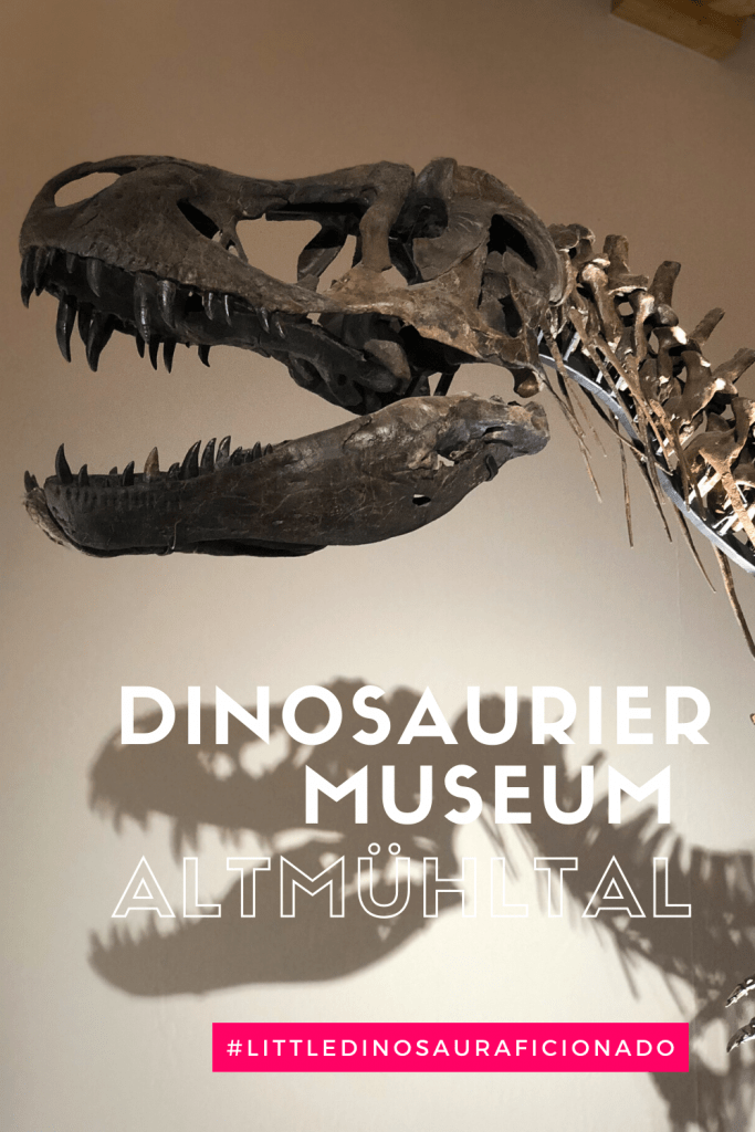 The Dino Museum in Altmühltal - a wonderful new dino highlight and day trip from Munich or road trip stop