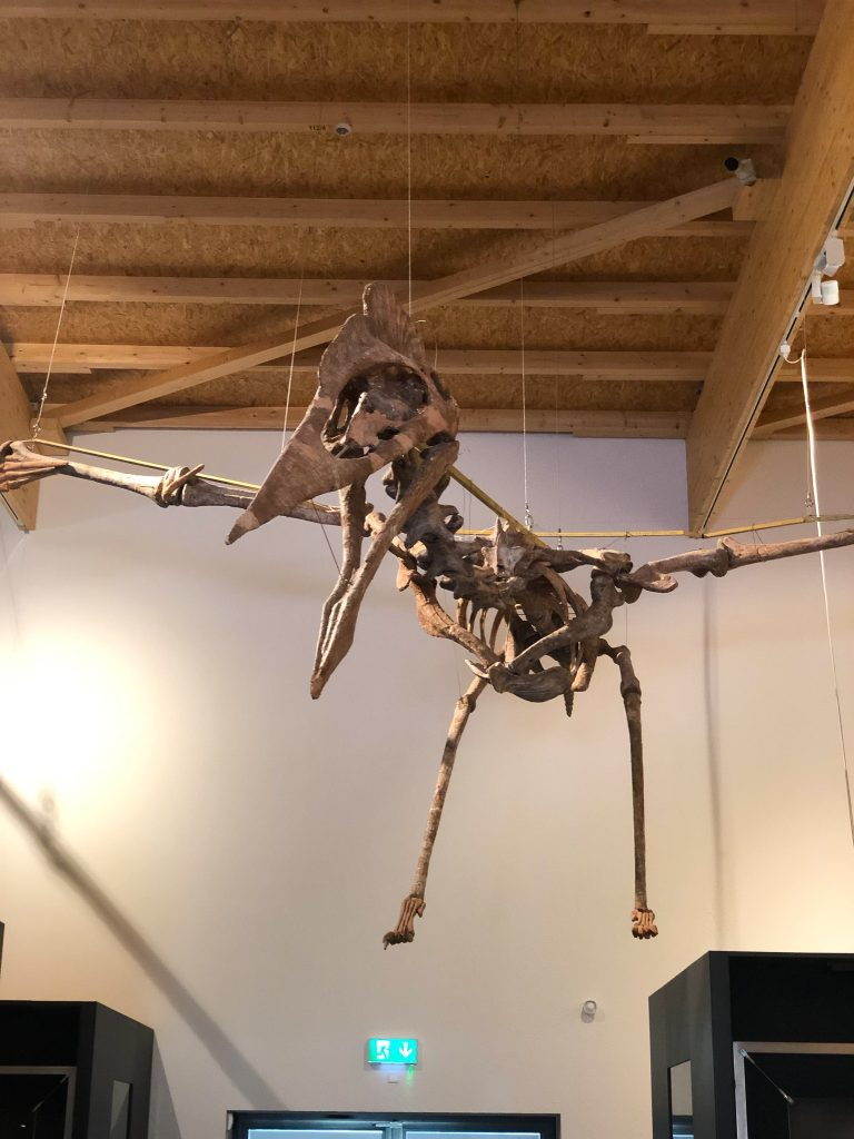 Quetzalcoatlus at the Dino Museum in Altmühltal