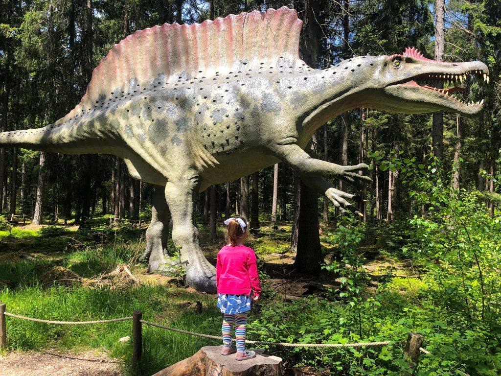Spinosaurus, with admirer, Dino Museum in Altmühltal