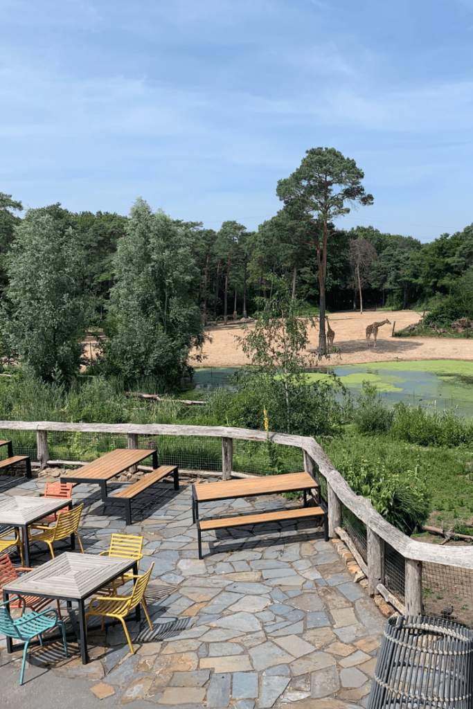 View from the Deck at the Safari Restaurant, Royal Burgers Zoo