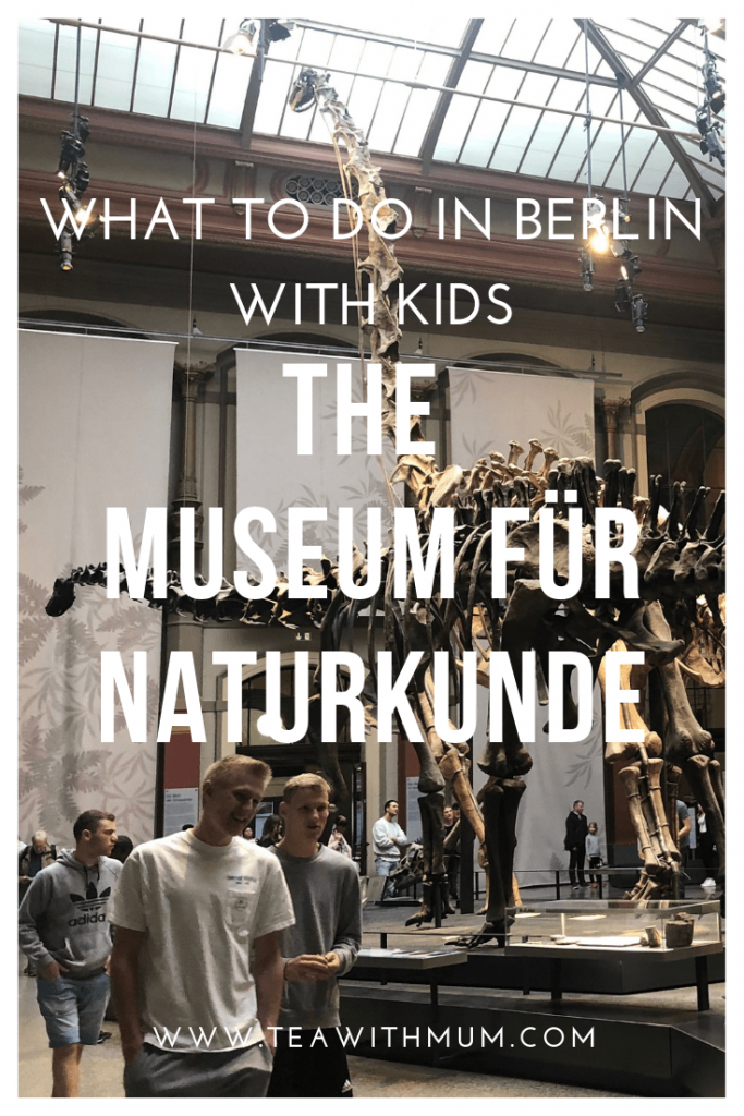 What to do in Berlin with kids: The Museum für Naturkunde