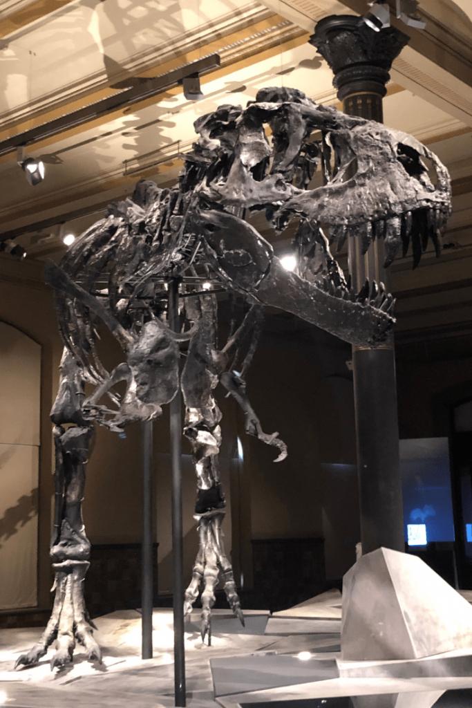 Tristan Otto the Tyrannosaurus