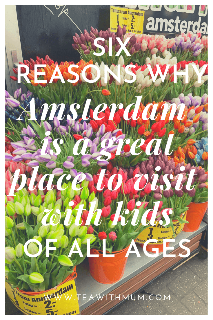 6 reasons why Amsterdam is a great place to visit with kids of all ages: title page with image of flowers at the Bloemenmarkt in the background