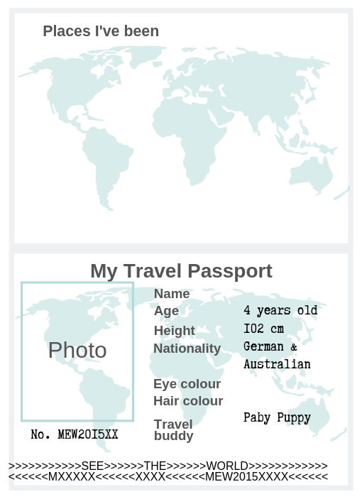 How to make a travel journal for a child: sample passport page