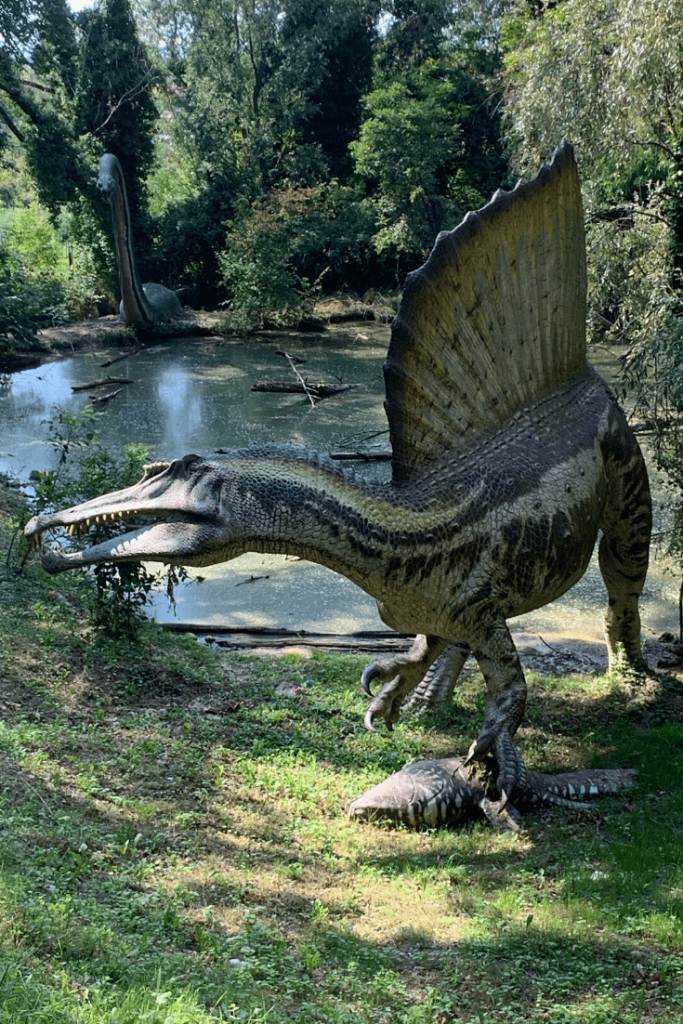 Spinosaurus, part of the Extinct theme area at Parco Natura Viva: little dinosaur aficionado