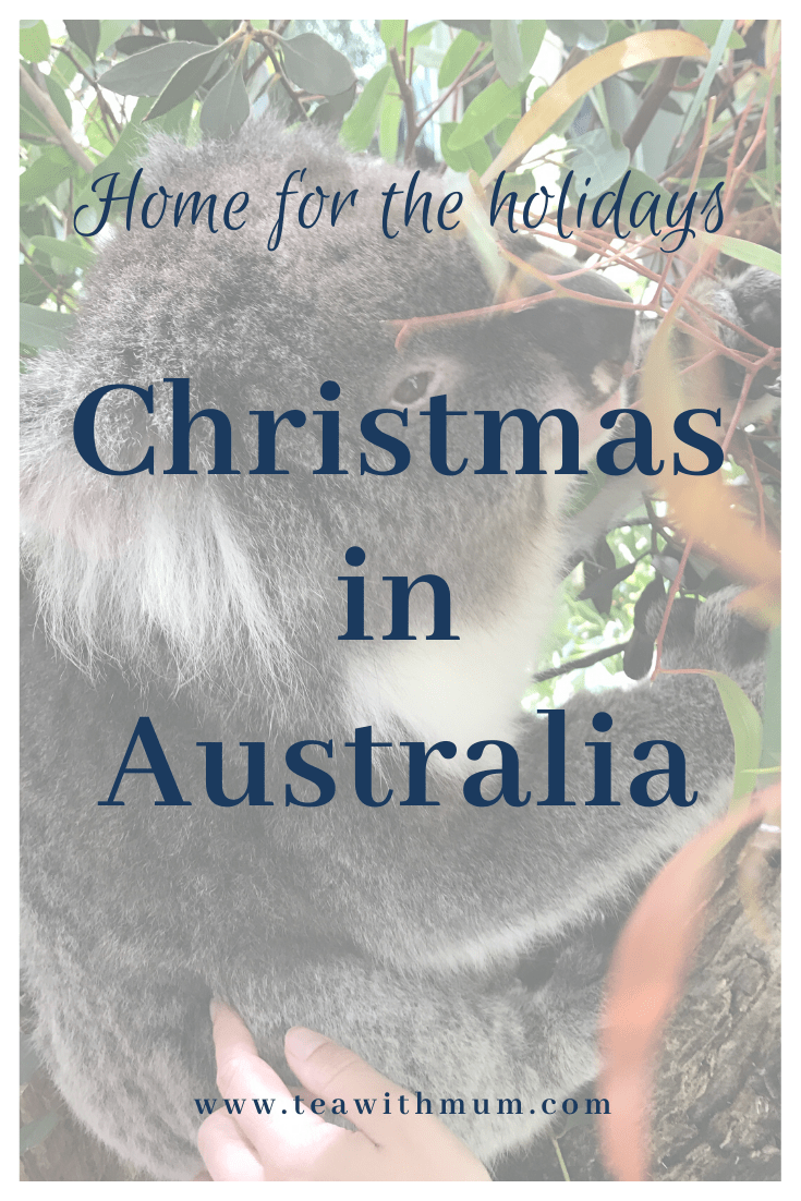We're going home for the holidays and spending Christmas in Australia; we're looking forward to catching up with friends and family and some of the cuddly locals