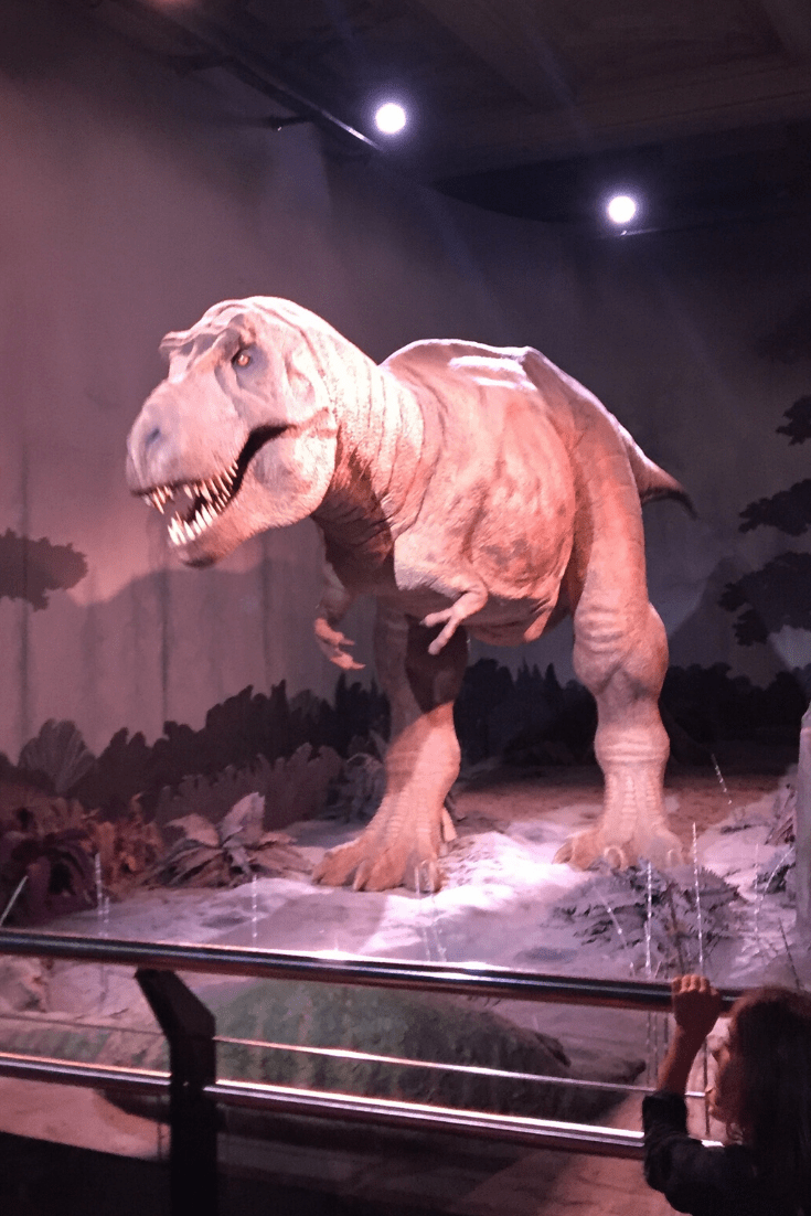 The animatronic Tyrannosaurus Rex, the star of London's dinosaurs at the Natural History Museum