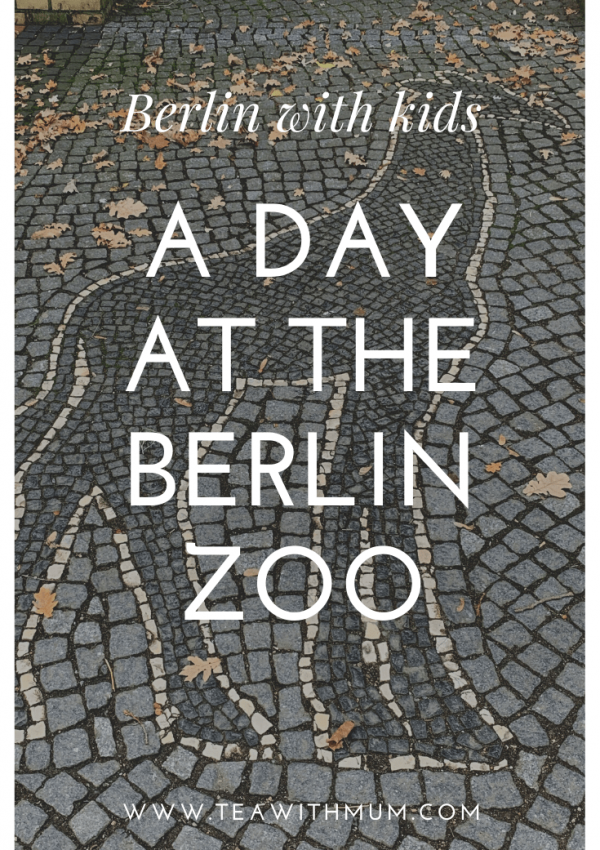 An afternoon at the Berlin Zoo
