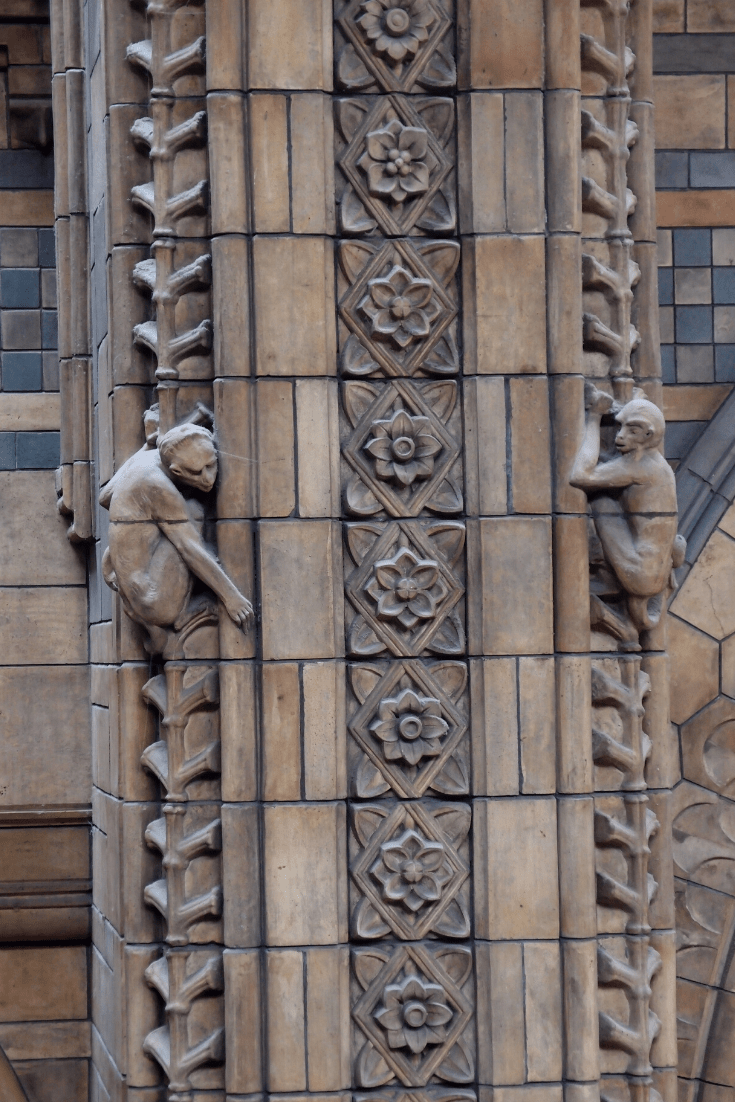 Natural History Museum: some of the ornamental carvings in Hintze Hall which help to make this museum Owen's cathedral to nature