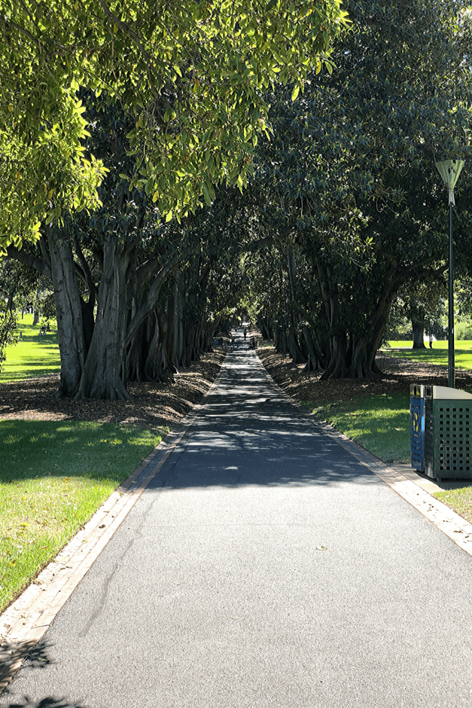 Number 4 of 13 fun things to do and see in Melbourne with kids: Take a stroll in the gardens, with four different gardens to choose from. Here: a path into the Fitzroy Gardens.
