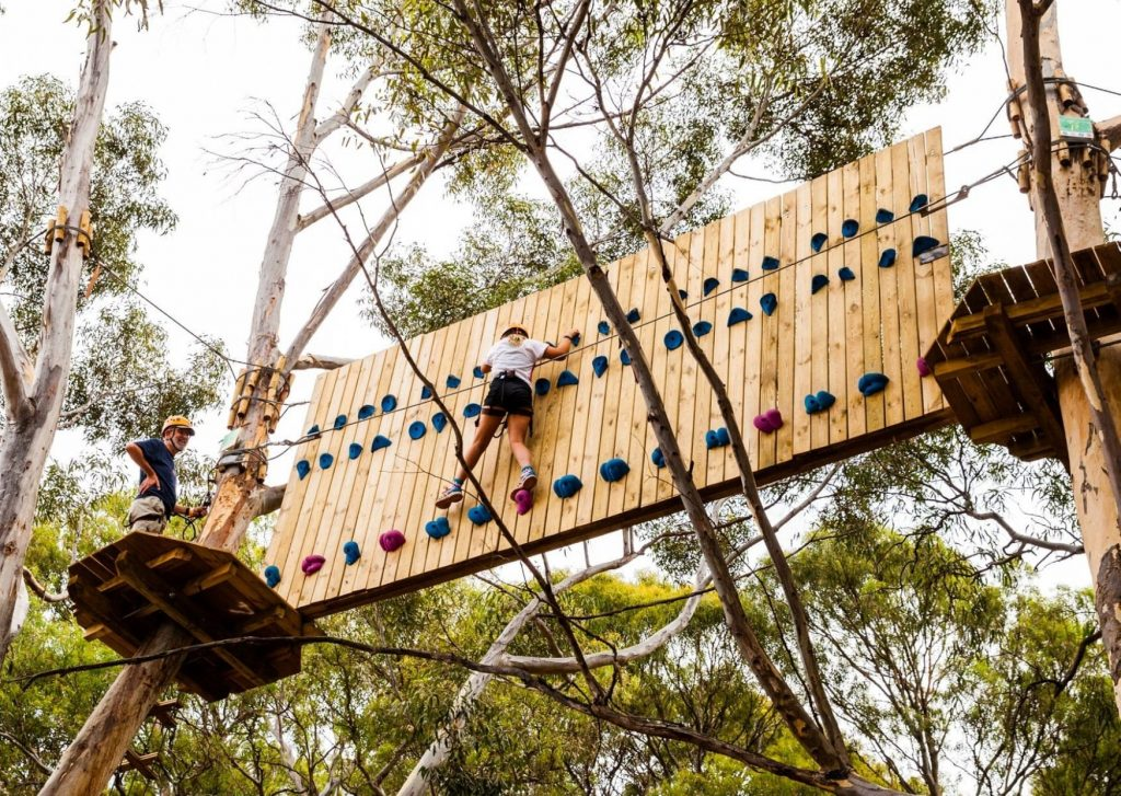 Adelaide with kids: The Grand Course (have to be over 135cm) at Adelaide Tree Climb. Image: Adelaide Tree Climb