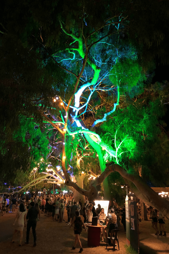 Illuminated trees at the Garden of Unearthly Delights, one of the main performance and gathering areas for the Adelaide Fringe