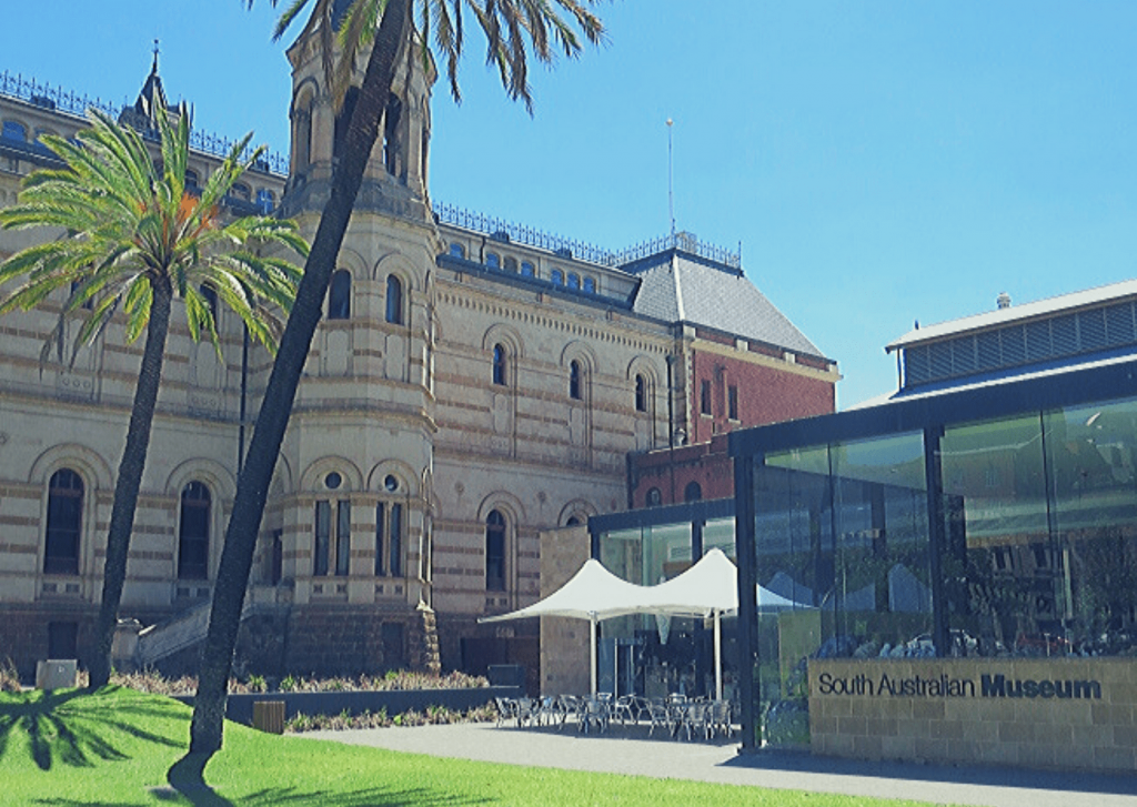 Adelaide with kids: See the South Australian Museum
