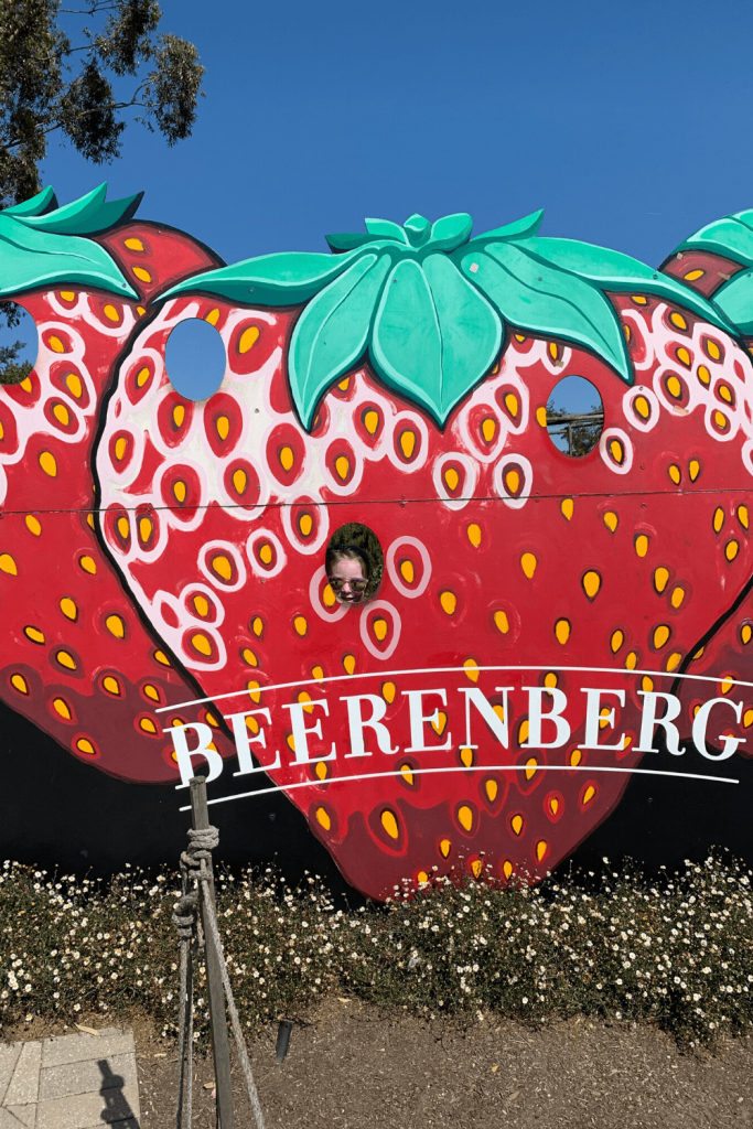 What to do in the Adelaide Hills: Pose with the strawberries then try some of the jams and sauces and the strawberry ice cream at Beerenberg strawberry farm