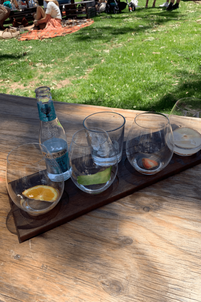 Gin flight with 4 Adelaide Hills Distillers gins and appropriate garnishes at Lot 100.