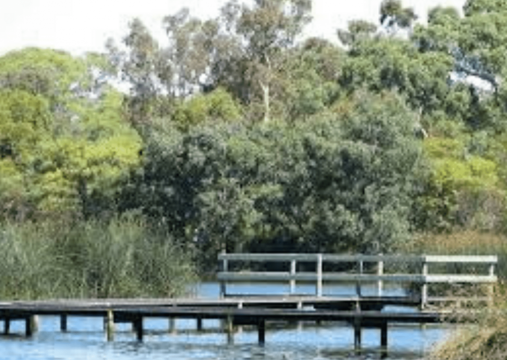 What to do in the Adelaide Hills: Visit the Laratinga wetlands at Mount Barker