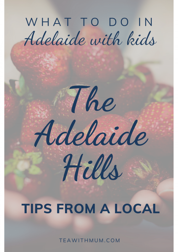 What to do in the Adelaide Hills with kids (of all ages): Tips from a local. Pick some strawberries at Beerenberg Strawberry farm
