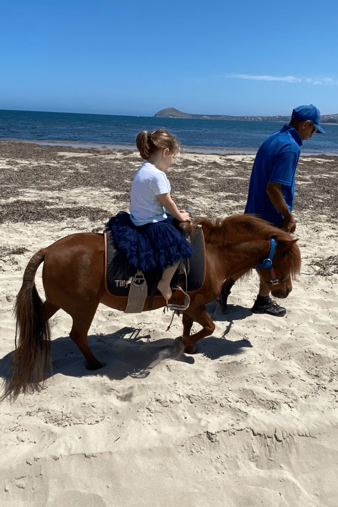 Pony rides at the sea side, Victor Harbour, Fleurieu Peninsula