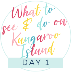 What to see and do on Kangaroo Island with kids: Day 1