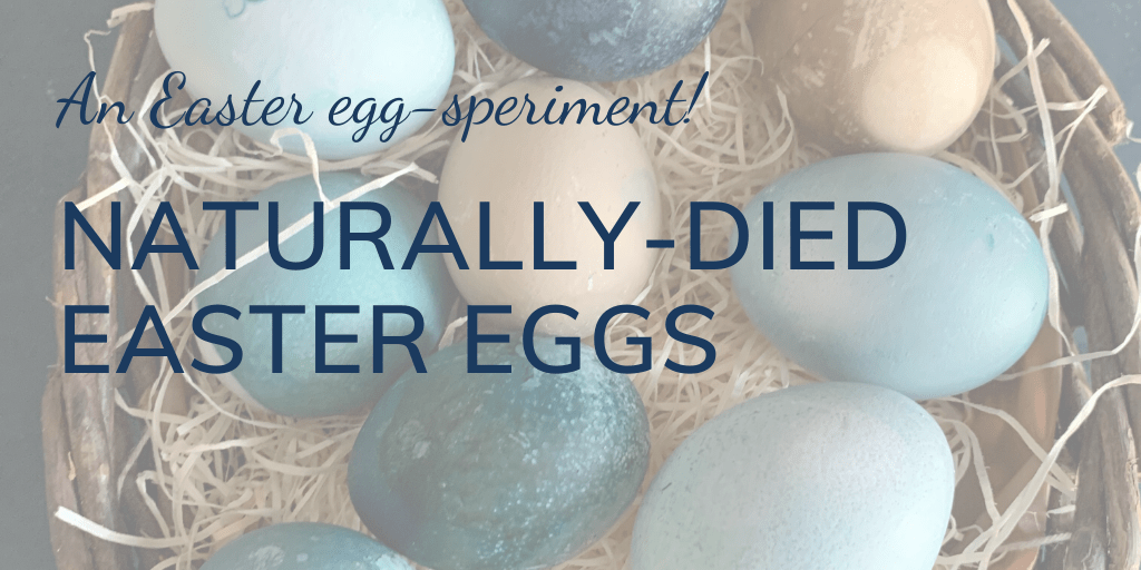 An Easter egg-speriment: How to dye Easter eggs with natural ingredients; banner; close up eggs in basket