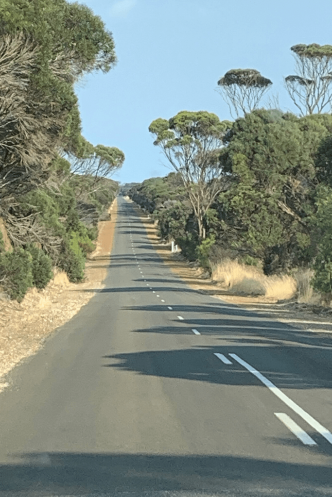 Lots of straight roads to drive on Kangaroo Island. Watch out for wildlife!