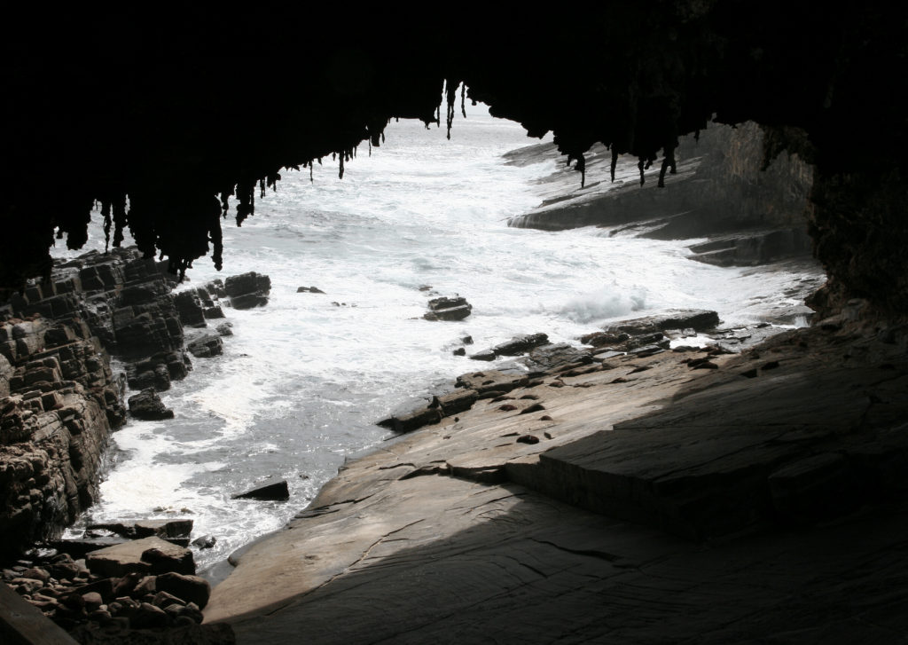Admirals Arch with New Zealand fur seals playing, Flinders Chase National Park, Kangaroo Island