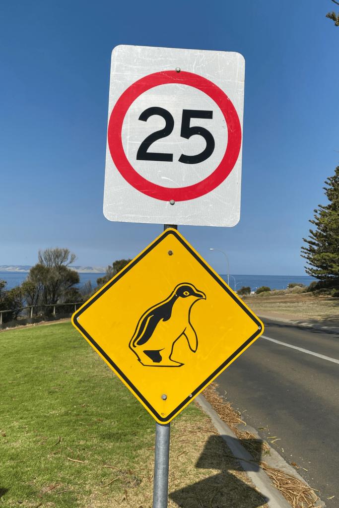 Warning sign for motorists (penguins), Penneshaw, Kangaroo Island