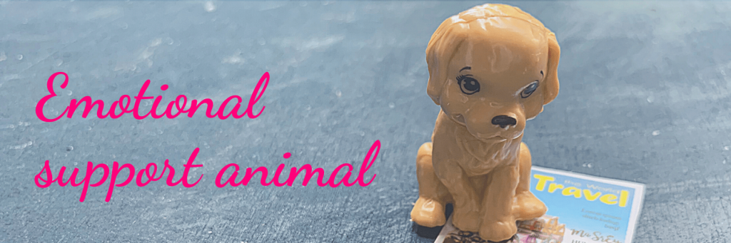 Emotional support animals on (international) flights