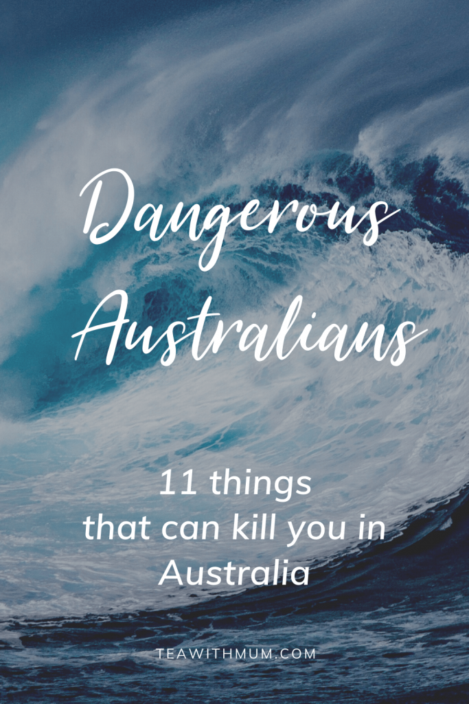 Dangerous Australians: 11 things that can kill you in Australia, with wave