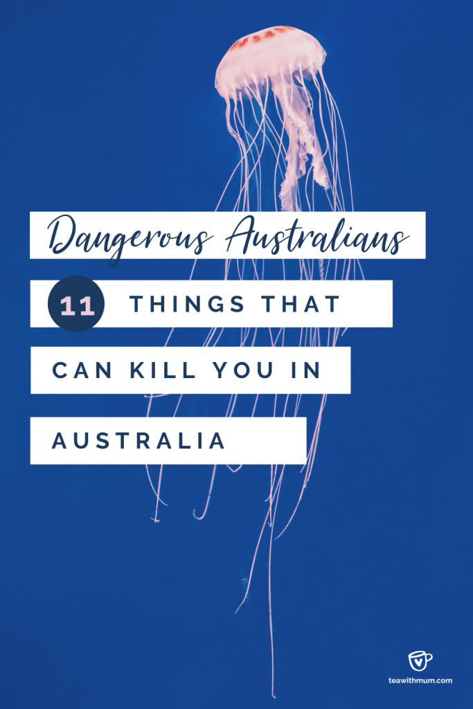 Deadly Australians: 11 things that can kill you in Australia: title with box jellyfish