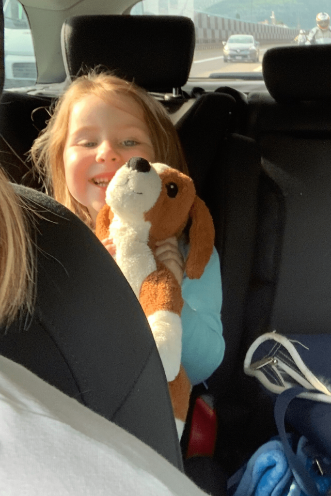 Don't forget the lovey! Tip #12 on a road trip with kids