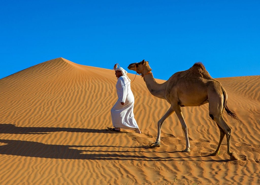 13 amazing things to do in Dubai with kids: visit the desert and go on a camel ride!