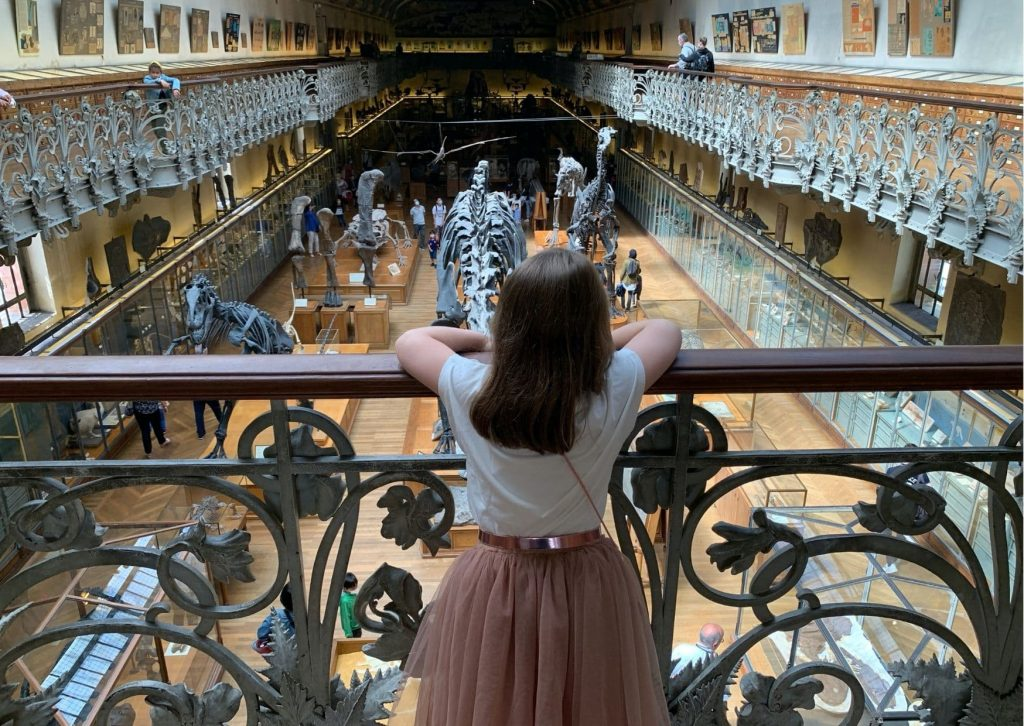 5 fun things to do in Paris with kids: Visit a museum, like the French National Museum of Natural History, and see the dinosaur gallery like Miss M